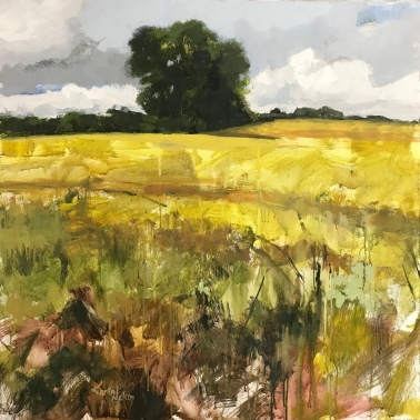 "Yellow Fields - 36"" x 36"" acrylic on canvas. Available for purchase at Somebody's Gallery, Petoskey, MI."