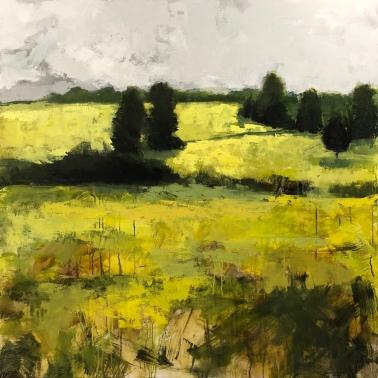 """Yellow Fields 4, 48""""x48"""" acrylic"""